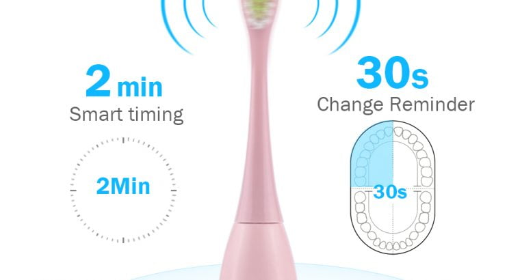 IPX7 waterproof rechargeable electric toothbrush